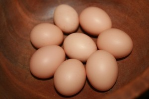 Small brown eggs in a bowl