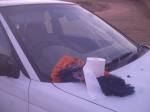 toilet roll on car